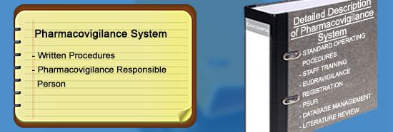 ziva health consultancy services